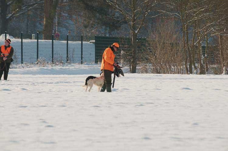 Beute für den Jäger, 18.12.2010 Foto: Karl Heinz Beck