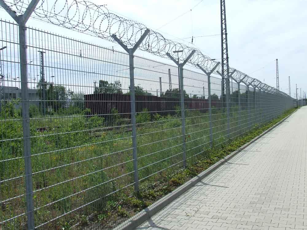Mauereidechsen-Lebensraum im Hochsicherheitstrakt bei Holzwickede am 16.06.2010 - leider nicht gegen Verbuschung gesichert Foto: Jörg Repschlaeger