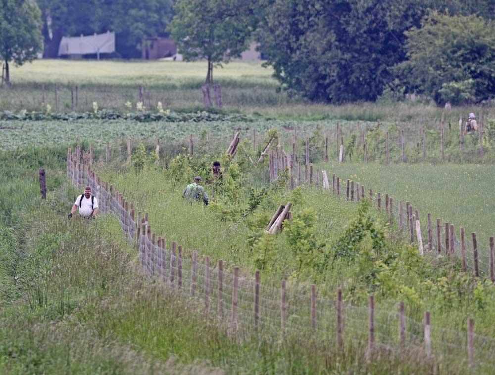 Mit insgesamt 6 Motorsensen wird ein Vogelschutzgehölz während der Brutzeit totgepflegt, 02.06.10 Foto: Bernhard Glüer