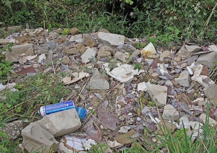 Bauschutt - leider auch nach zwei Wochen noch immer unverändert am Ufer der Armecke (NSG Hemmerder Wiesen), 07.08.2011, Foto: Bernhard Glüer