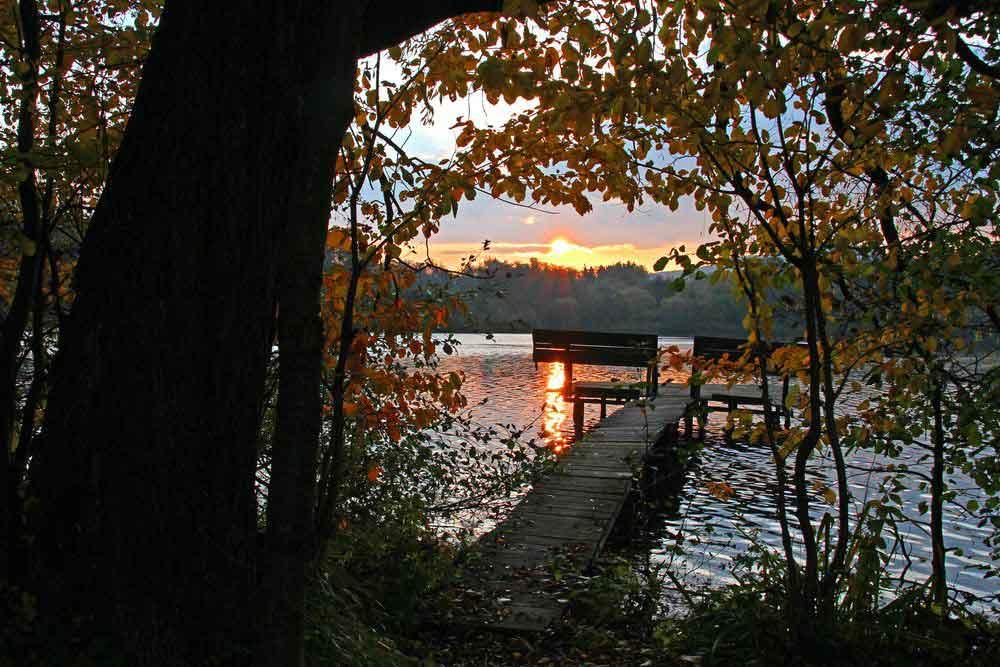 Sonnenaufgang am Ententeich am 01.11.11 Foto: Gregor Zosel