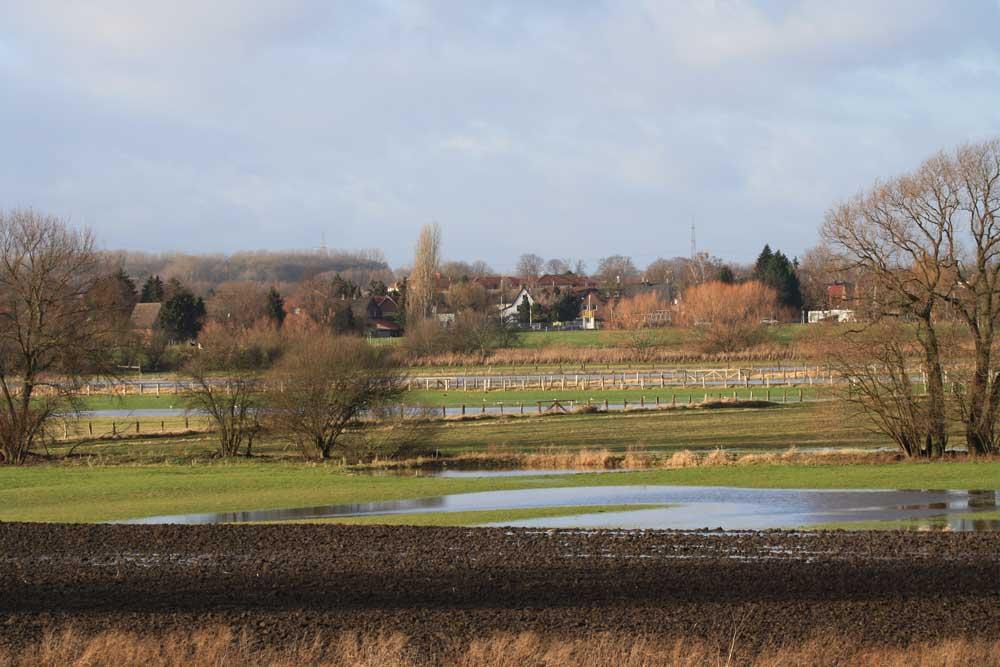 Land zumindest teilweise unter in den ehemaligen Rieselfeldern Werne am 30.12.2011 Foto: Achim Pflaume