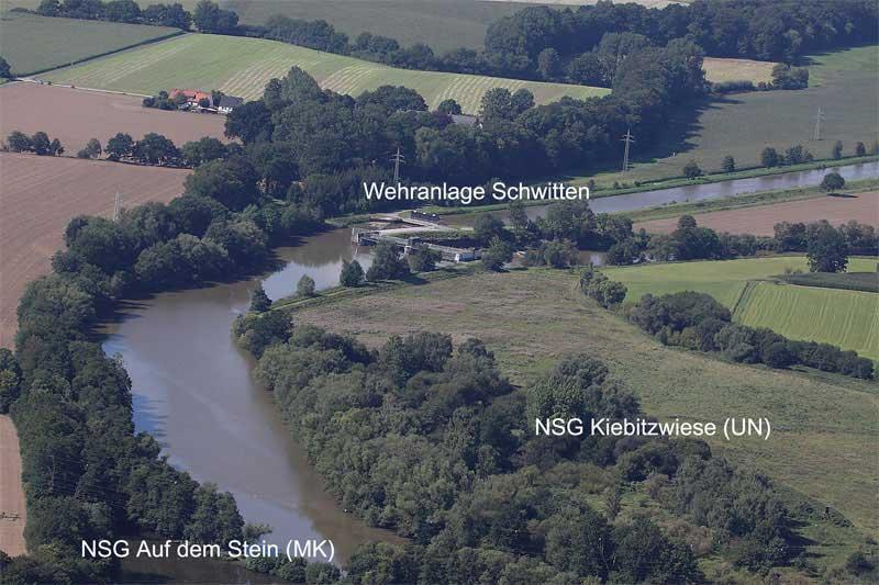 Blick in den Westteil des NSG; in den nicht mehr landwirtschaftlich genutzten Grünlandflächen sollen in späteren Jahren weitere Vernässungsmaßnahmen umgesetzt werden. Foto: Gudrun Goßmann