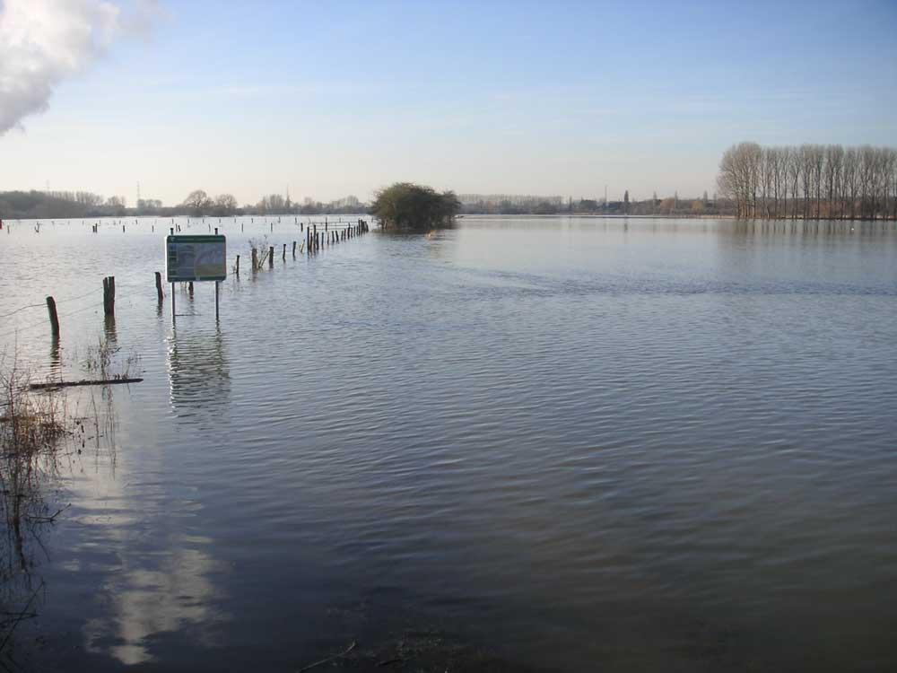Lippehochwasser in den ehemaligen Rieselfeldern südlich der Kläranlage Werne am 10.01.2011