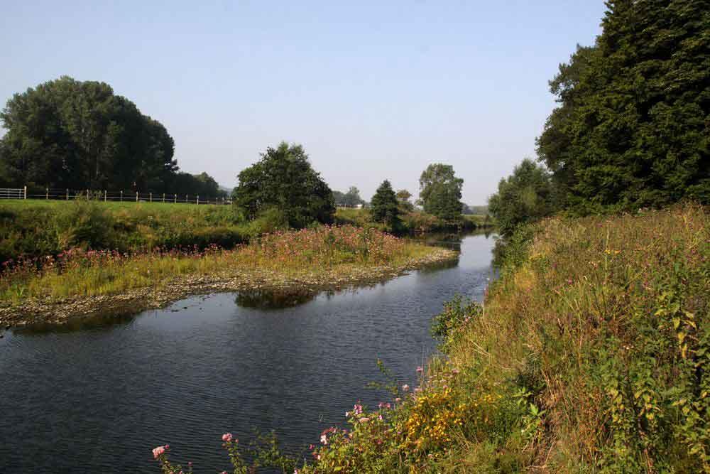 Die Alte Ruhr im NSG Obergraben westlich Wickede am 04.08.11 Foto: Gregor Zosel