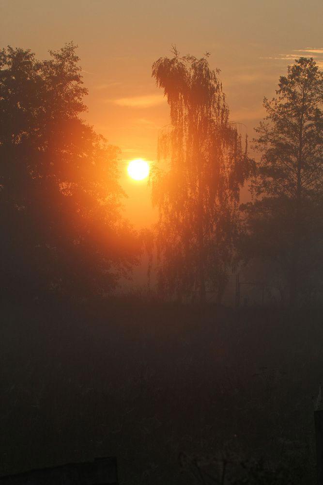 Sonnenaufgang auf der Kiebitzwiese am 25.09.11 Foto: Gregor Zosel