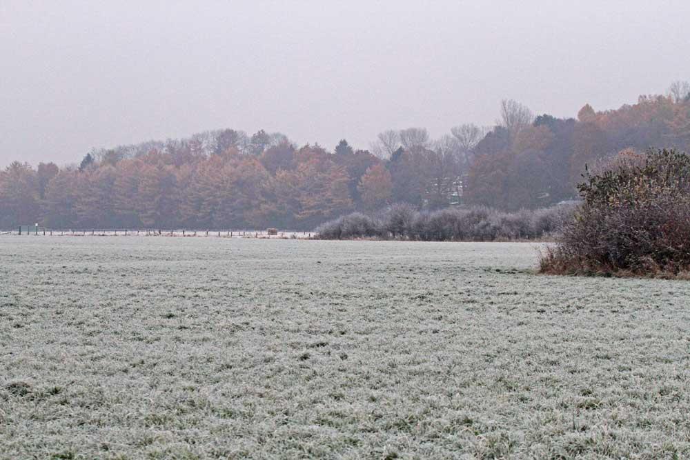 Ungemütlich dieser Novembertag...am 15.11.12 Foto: Gregor Zosel