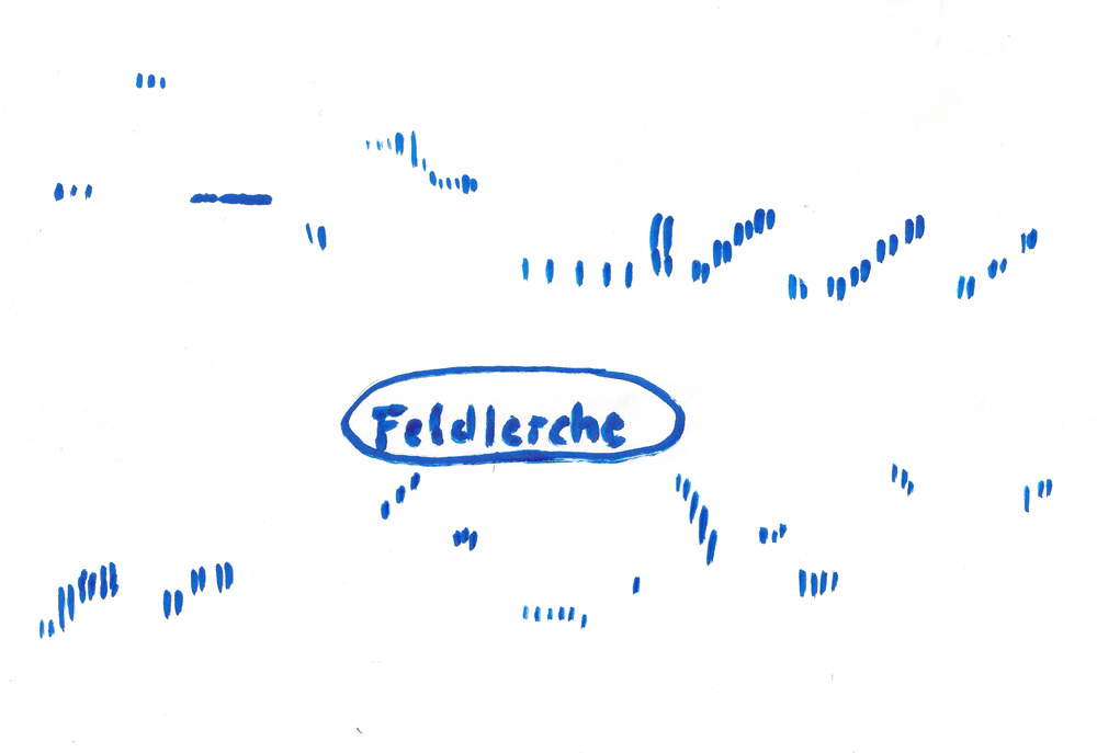 Sonagramm als Auszug aus dem Gesang der Feldlerche, 24.07.2013 Foto: Volker Heimel