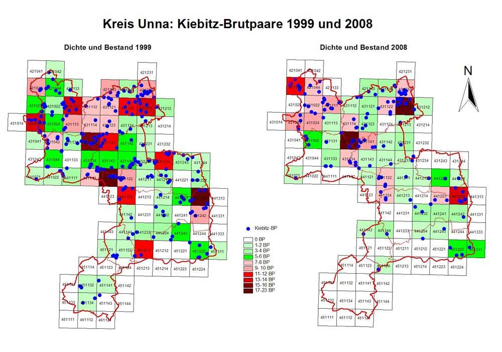 Kiebitzvorkommen 1999 + 2008
