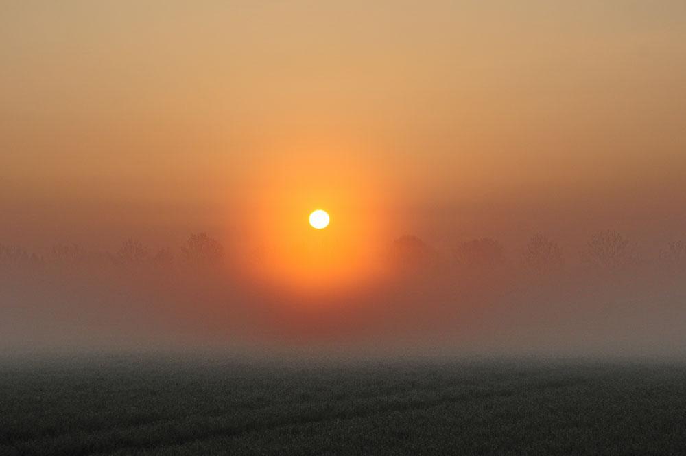 Wie im Märchen geht langsam die Sonne über die Kiebitzwiese auf am 05.05.2013 Foto: Marvin Lebeus