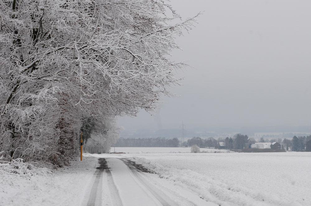 Traumhafte Winterlandschaft bei Hemmerde-Dreihausen am 30.01.2015 Foto: Marvin Lebeus