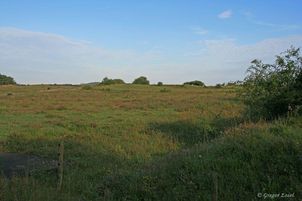 Manchmal scheinen die Trockenrasenflächen endlos!.....am 18.07.17 Foto: Gregor Zosel