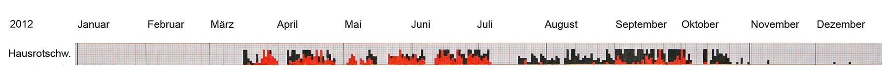 Grafische Darstellung von täglichen Zufallsbeobachtungen von Hausrotschwänzen im Kr. UN aus dem gesamten Jahr 2012, wobei bis 5 mm Säulenhöhe jeweils bis zu 5 Individuen gemeint sind (7 mm entsprechen mehr als 5 Ex), singende Individuen sind jeweils rot dargestellt, 03.09.2017 Foto: Bernhard Glüer