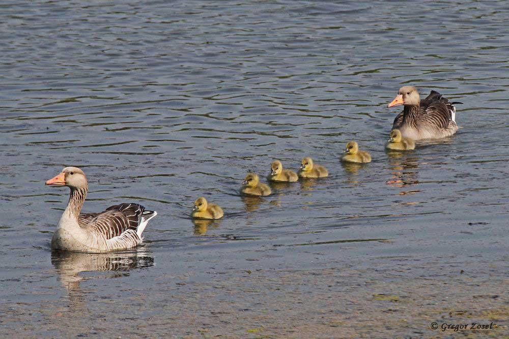 Glückliche Familie beim Badeausflug.....am 21.04.18 Foto: Gregor Zosel