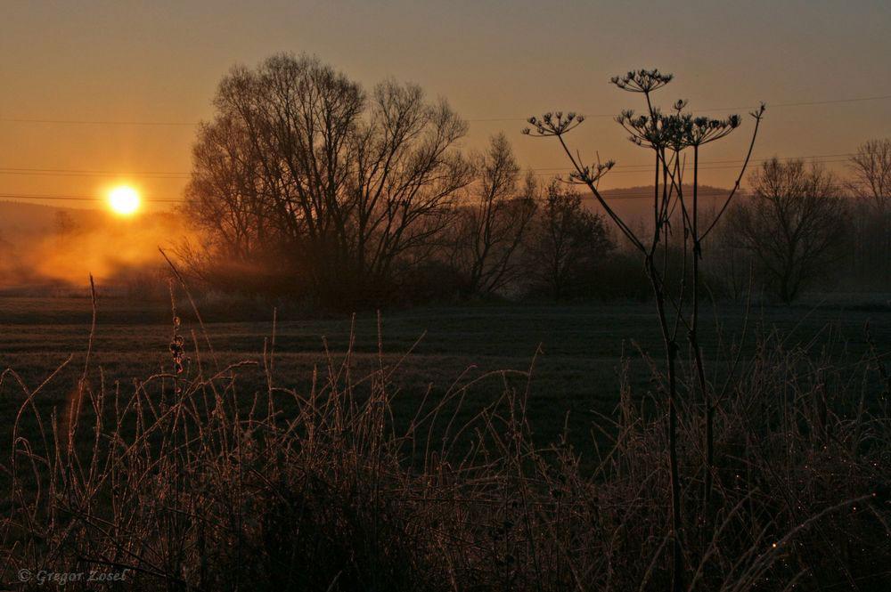 Die Sonne geht auf im Hammer Wasserwerk......am 23.11.18 Foto: Gregor Zosel