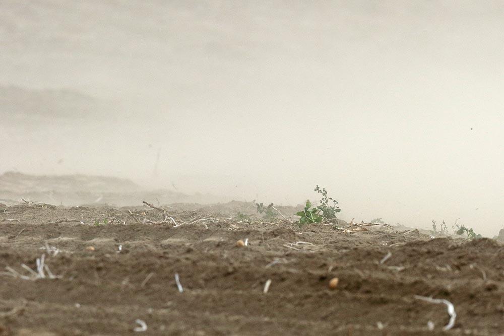 Kein Sandsturm in der Wüste Gobi, sondern - pünktlich zum heutigen Herbstanfang - ein sturmgepeitschter Acker östlich von Frdbg.-Bausenhagen, 21.09.2018 Foto: Bernhard Glüer